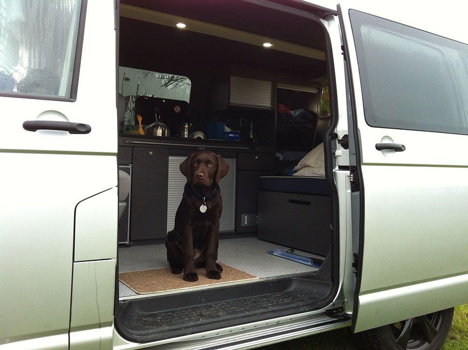 Blue in VW campervan