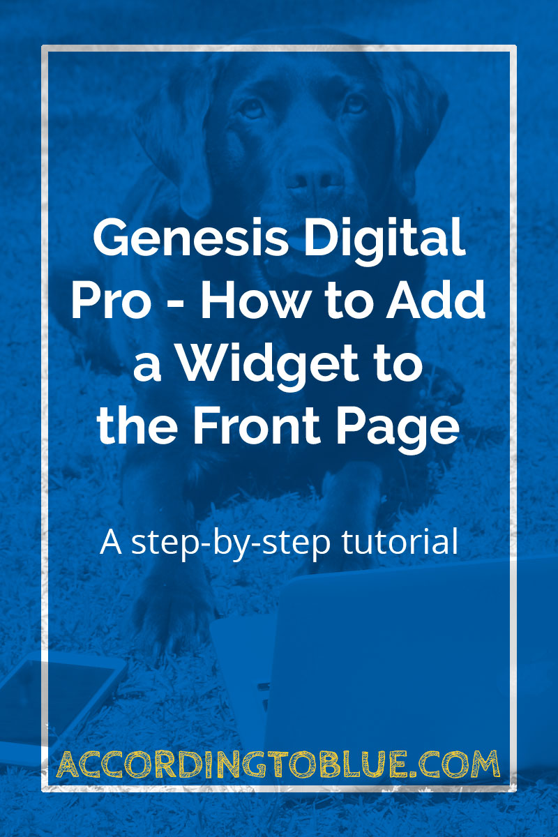 genesis digital pro add widget front page
